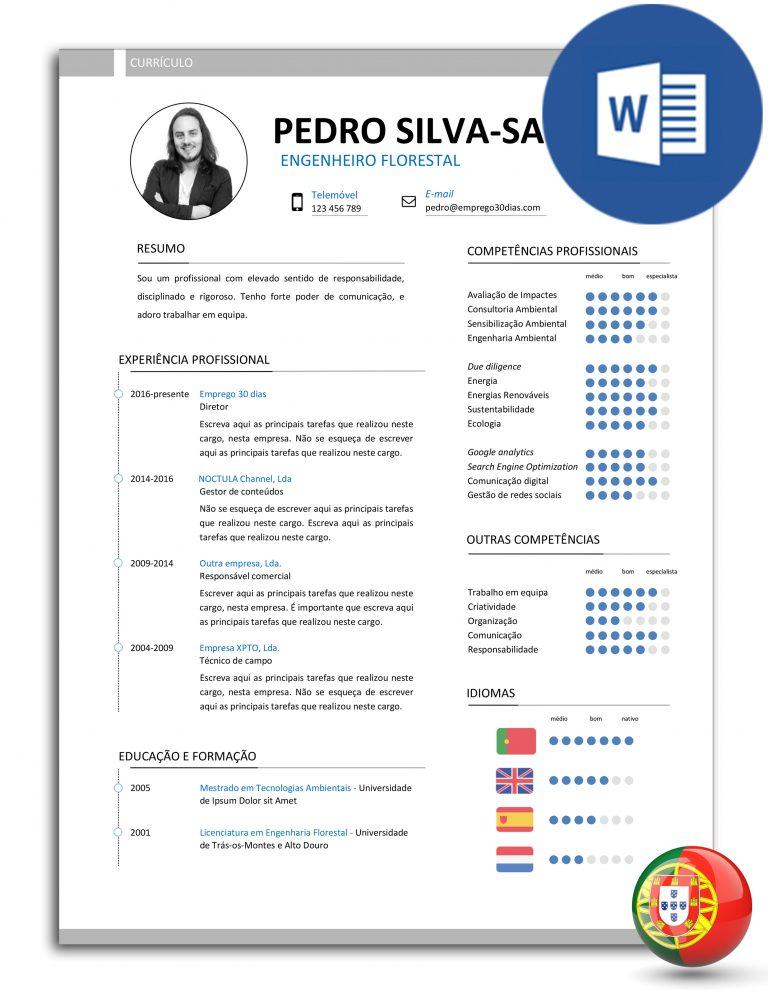 CV-PSS-E30D-007 – modelo de curriculo editavel em word